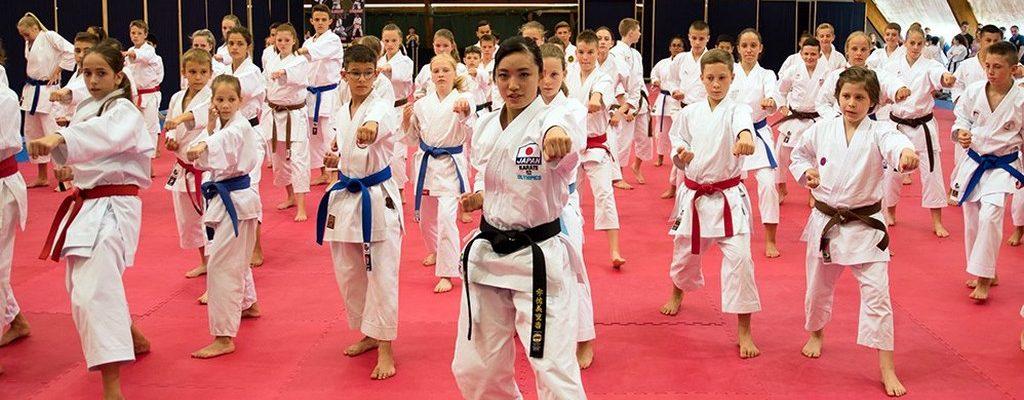 Каратэ включили в программу Юношеских Олимпийских Игр 2018