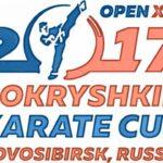 Кубок маршала А.И. Покрышкина-2017