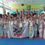 Первенство Асбестовского городского округа по карате-до-2018